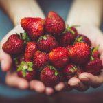歯の健康によいとされる食べ物や食生活